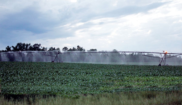 Rural Georgia Irrigation Services Rates